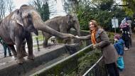 Hohe Tiere: Elefantendame Shandra und Staatsministerin Özoguz sehen sich nach vielen Jahren wieder.