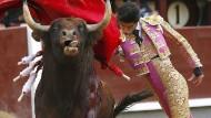 Torero Victor Barrio kurz vor der tödlichen Attacke des gereizten Stieres