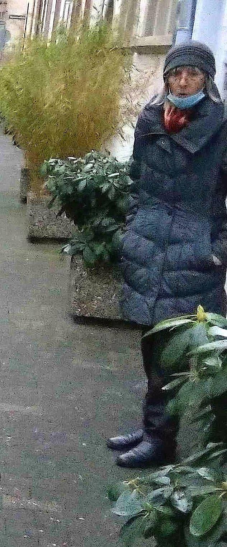 Auf frischer Tat: Nachbarn fotografierten die Täter.
