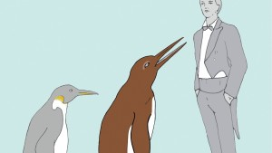 Knochen von Riesenpinguin in Neuseeland gefunden