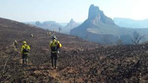 Verheerende Waldbrände im Amazonas-Regenwald