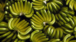 Der Kampf um die Bananen