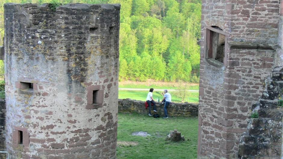 Bastionär: Seit Freilegung von wucherndem Rankenwerk ist der Blick von der Kollenburg auch wieder ins Maintal möglich.