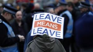 Der Ökonom Patrick Minford liebt den Brexit