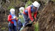 Kolumbianische Minenarbeiterinnen entschärfen von Rebellen gelegte Sprengsätze in der Provinz Antioquia, damit vertriebene Bauern dort wieder angesiedelt werden können.