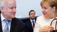 Turteltauben: Seehofer und Merkel nach der Nacht der Nächte