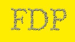 Die FDP auf der Sinnsuche