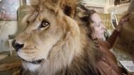 Das Netzfundstück-Blog. Heute: Neil der Löwe mit Tippi Hedren