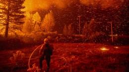 Munich Re nennt Waldbrände als schwerste Naturkatastrophe 2018