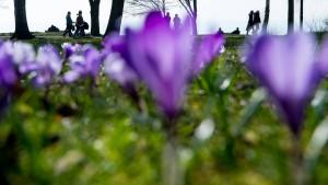 Meteorologen hoffen auf warmes Osterfest