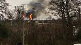 Zoo steht in Flammen