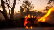 Große Trockenperiode führt zu Bränden