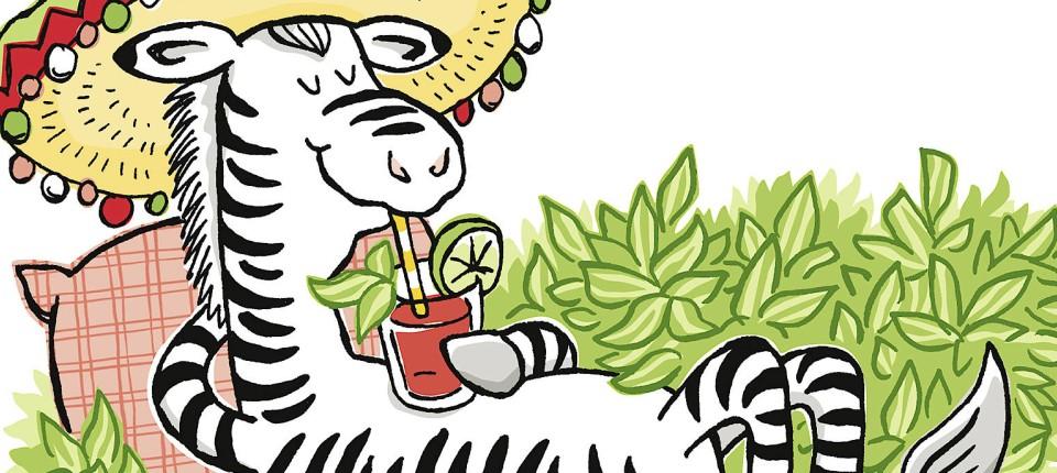 Alles Im Grünen Bereich Das Ewige Zebrakraut