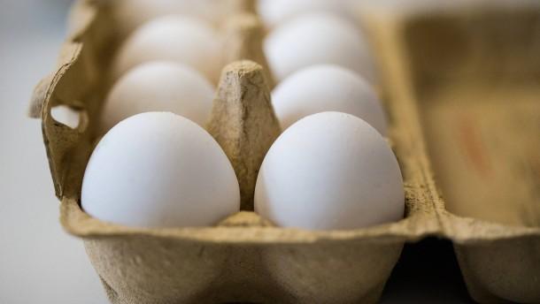 Fipronil abermals in Eiern nachgewiesen