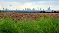 Weites Land: Das von der Stadt geplante Baugebiet an der A<ET>5 wird auch Äcker kosten.