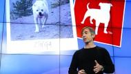Zurück an der Firmenspitze: Zynga-Gründer Mark Pincus