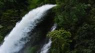 Das Königreich setzt auf Wasserkraft