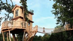So finden Sie das perfekte Baumhaus