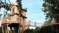 Ein Baumhaus von Baumbaron