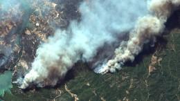 Waldbrände wüten in Griechenland und Türkei