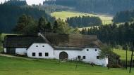 Die Harmonie von Dorf, Wald und Wiese in Oberösterreich bricht allmählich und ein stinkend fauler Geruch verdeutlicht die verlorene Heimat des Protagonisten.