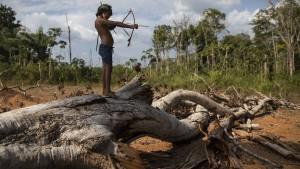 Stimmen aus dem brasilianischen Regenwald