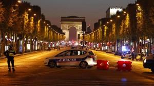 Löwenbaby in Luxusauto auf Champs-Elysées entdeckt