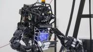 """Roboter """"Atlas"""" beim Tai Chi"""