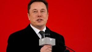 Ein Dämpfer für Tesla