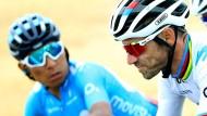 Hielten sie ihr Team zurück, um langsamer zu fahren? Alejandro Valverde (vorne) und Nairo Quintana