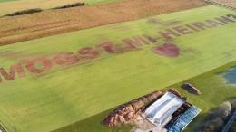 Landwirt sät riesigen Heiratsantrag