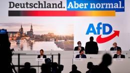 AfD will Spitzenkandidaten in Urwahl bestimmen