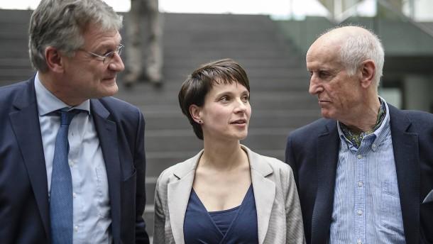 Petry beginnt Machtkampf um AfD-Führung