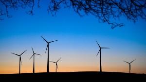 Windkraftanlagen töten täglich Milliarden Insekten