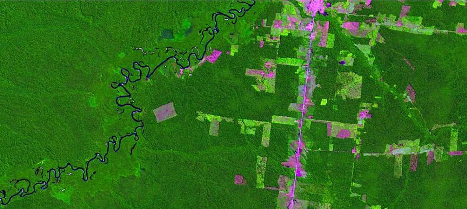 Brasilien Holzt So Viel Regenwald Ab Wie Lange Nicht Mehr