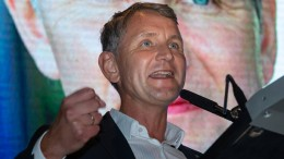 Björn Höcke fordert direkte Demokratie