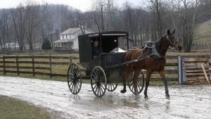 Die Amish leben nicht nur trocken