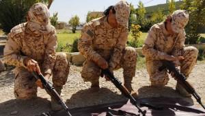 Erste Peschmerga-Kämpfer in Kobane angekommen