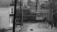 Schleier der Hoffnungslosigkeit: Martinsburg, West Virginia
