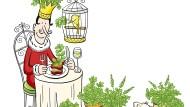 Ab in die Botanik: Ein Kraut für Könige