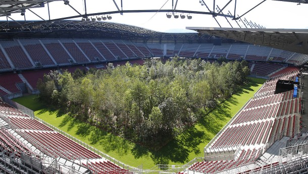 Was soll ein Wald im Stadion?