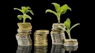 Wie legt man Geld lukrativ und umweltschonend an?
