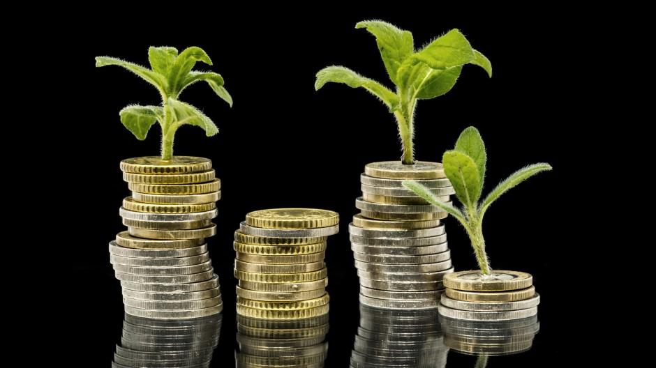 Lukrativ soll es sein, aber auch umweltfreundlich. Welche Anlagemöglichkeiten bleiben da?