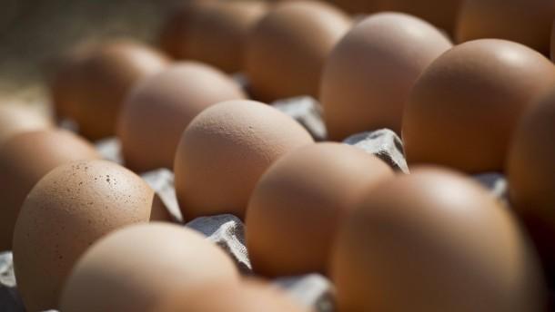 Eier wegen Salmonellen in vielen Bundesländern zurückgerufen