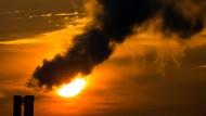 """""""Es existiert kein Szenario, in dem Vermögenswerte von den Folgen des Klimawandels unberührt bleiben."""""""