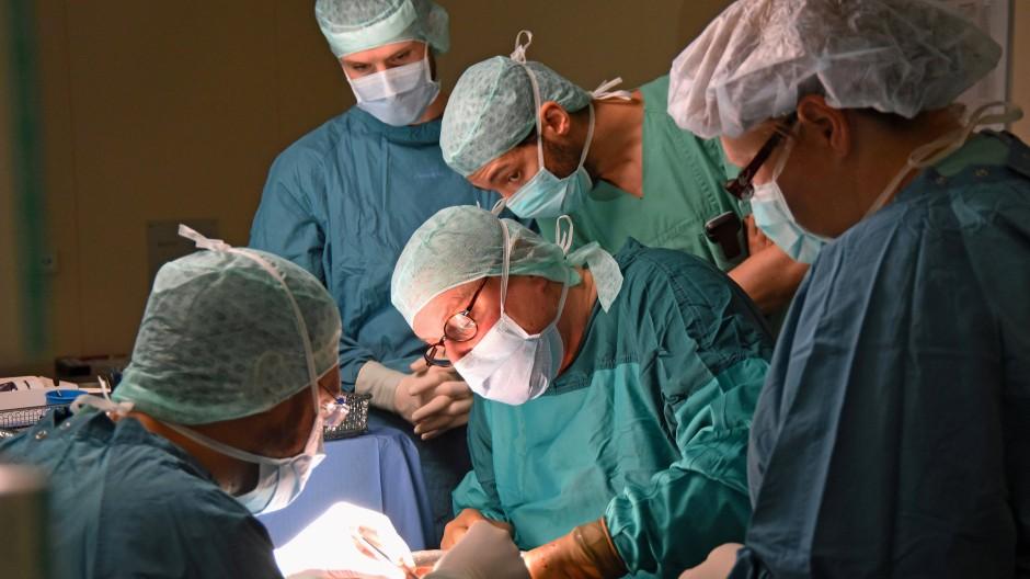 Organe gesucht – Was tun, wenn Niere, Leber und Herz knapp werden?