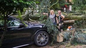 Kinder durch umgestürzte Bäume eingeschlossen