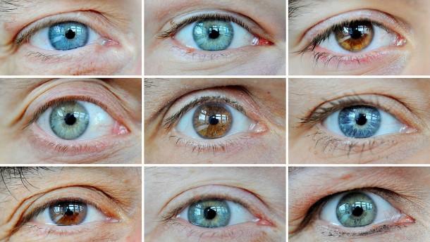 50 Gene für Augenfarbe entdeckt
