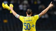Rekord für Ibrahimovic - Sieg für Italien