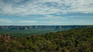 Brasiliens Ureinwohner kämpfen für ihren Regenwald
